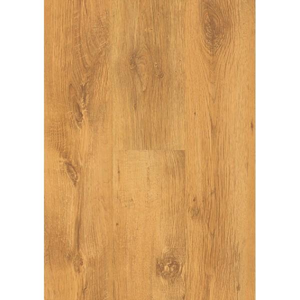 Original Sutter oak